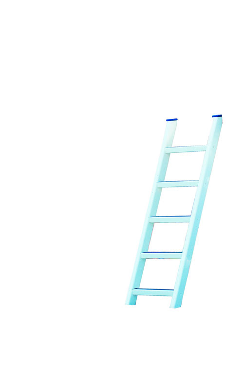 5 ft ladder
